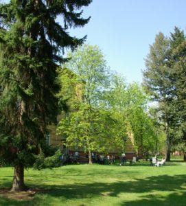 weitläufiger Garten der Heiligenfeld Klinik Berlin
